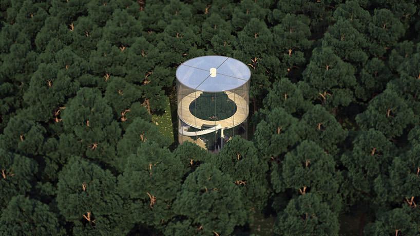 a-tree-in-the-house-in-almaty-kazakhstan-by-almasov-aibek-designboom-05